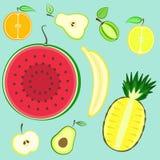 Colorful summer cut fresh fruits set Royalty Free Stock Photo