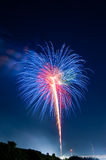 Colorful Summer Fireworks Royalty Free Stock Photography