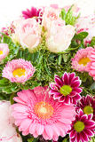 Colorful summer flowers Royalty Free Stock Photo
