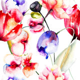 Colorful summer flowers Royalty Free Stock Images