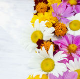 Colorful summer flowers on white table Stock Images