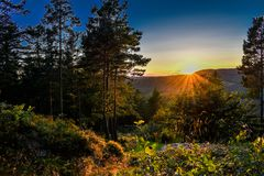 Summer sunset from the forests of Kristiansand in Norway. royalty free stock images