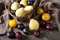 Colorful summer fruits -plums and pears on wooden table Stock Photos