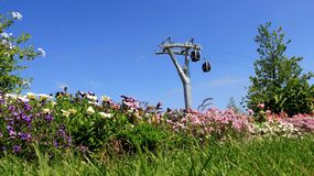 Colorful Of Summer Garden With Cable Car. Colorful Garden Blooming Flower With Cable Car And Blue Sky In Summer.Berlin Germany Royalty Free Stock Photography