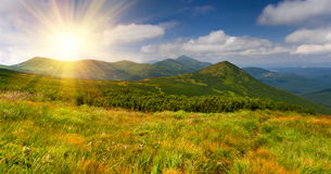 Colorful summer landscape Stock Photography