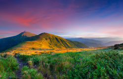 Colorful summer landscape. In the mountains. Sunrise Stock Photos
