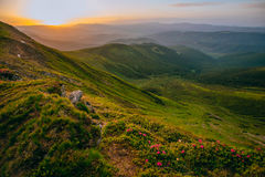 Colorful summer landscape in the Carpathian mountains.. Mountain valley during sunrise / sunset. Natural summer landscape Royalty Free Stock Photos