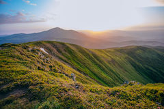 Colorful summer landscape in the Carpathian mountains.. Mountain valley during sunrise / sunset. Natural summer landscape Stock Photo