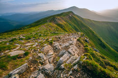 Colorful summer landscape in the Carpathian mountains. Stone surface. Mountain valley during sunrise / sunset. Natural summer landscape Royalty Free Stock Photography