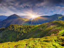 Colorful summer landscape in mountains Stock Photography
