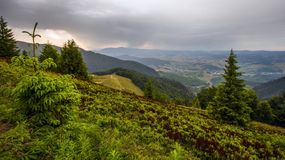 Colorful summer landscape in the mountains, Europe travel, beauty world. Colorful landscape in the mountains, Europe travel Royalty Free Stock Photo