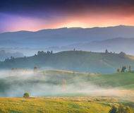 Colorful summer landscape in the mountains. Foggy sunrise Royalty Free Stock Photography
