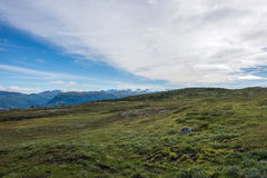 Colorful summer landscape. Colorful summer landscape with mountains in Norway Stock Image