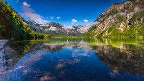 Colorful summer morning on the Bohinj lake in Triglav national p Stock Photos