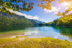Colorful summer morning on the Bohinj lake in Triglav national p Stock Photography