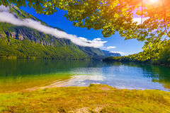Colorful summer morning on the Bohinj lake in Triglav national p Royalty Free Stock Photo