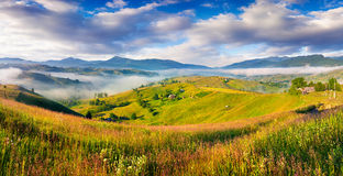 Colorful summer morning in Carpathian mountain village. Stock Photo