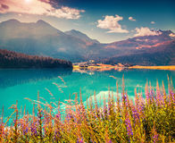Colorful summer morning on the Champferersee lake. Stock Photography