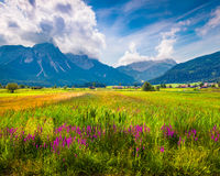 Colorful summer morning on the Golfclub Zugspitze