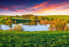 Colorful summer morning on lake Royalty Free Stock Image
