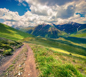 Colorful summer morning in the mountains. Stock Photography