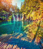 Colorful summer morning in the Plitvice Lakes National Park. Cro Stock Photo