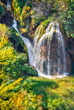 Colorful summer morning in the Plitvice Lakes National Park Royalty Free Stock Image