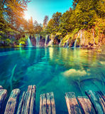 Colorful summer morning in the Plitvice Lakes National Park. Stock Photo