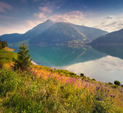 Colorful summer morning in the Resia (Reschensee) lake. Stock Photo