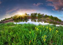 Colorful summer morning on the river. Stock Images