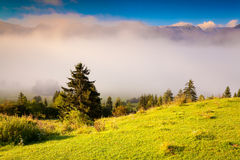 Colorful summer morning in the Triglav national park Slovenia, A Stock Photo