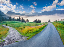 Colorful summer morning in the Triglav national park Stock Photos