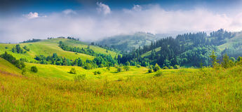 Colorful summer panorama of foggy mountain village. Royalty Free Stock Photo