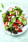 Colorful Summer Salad Royalty Free Stock Image