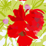 Colorful summer seamless wallpaper. With red flowers Stock Photography
