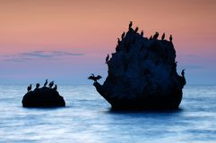 Colorful summer seascape. rocky islands with birds at sunset Royalty Free Stock Photo