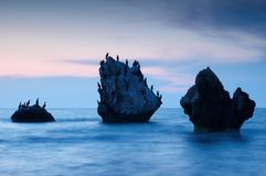 Colorful summer seascape. rocky islands with birds at sunset Stock Photography