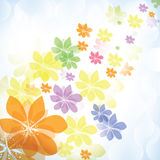 Colorful summer spring background with flowers Stock Photos