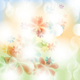 Colorful summer spring background with flowers Stock Image