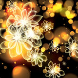 Colorful summer spring glowing flowers background Stock Photography