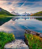 Colorful summer sunrise on Bachalpsee lake with Schreckhorn and stock photo