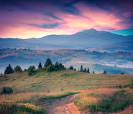 Colorful summer sunrise in the Carpathian mountains. Royalty Free Stock Images