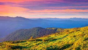 Colorful summer sunrise in Carpathian mountains Royalty Free Stock Photography