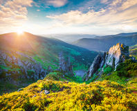 Colorful summer sunrise in the Carpathian mountains. Royalty Free Stock Photos