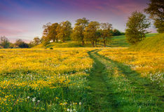 Colorful summer sunrise in countryside with road Royalty Free Stock Image