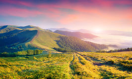Colorful summer sunrise in the foggy mountains. Royalty Free Stock Photos