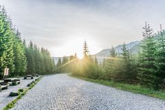 Colorful summer sunrise landscape in the mountains. stock images