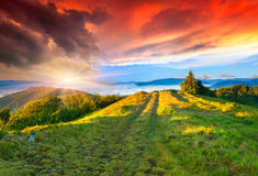 Colorful summer sunrise in mountains. Royalty Free Stock Photography