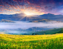 Colorful summer sunrise in mountains Stock Photo