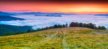 Colorful summer sunrise in mountains Stock Photography